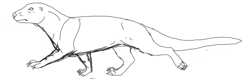 Asotu walking sketch is this correct? by lighteningfox