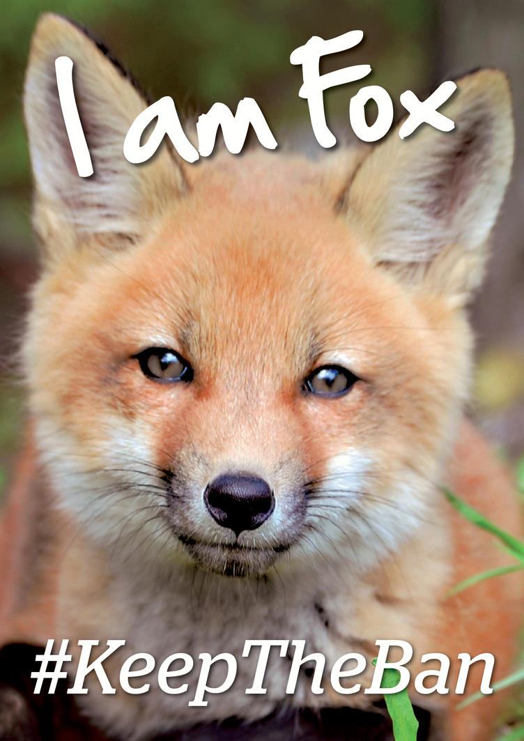 I Am Fox by lighteningfox