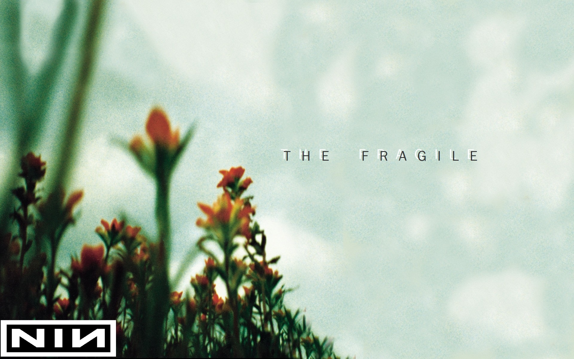 Nine Inch Nails The Fragile Wallpaper By Captainselection