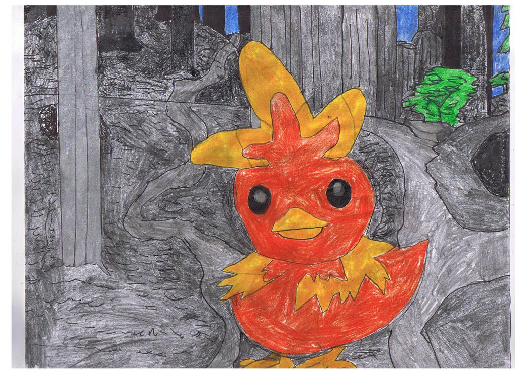 torchic_in_the_deep_woods_by_ienzo628-d9agqgo.jpg