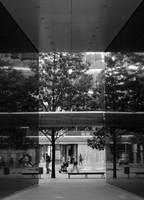 Reflection by Grzechool
