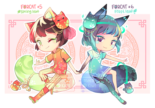 [CLOSED] Auction Adopt: Forcat #5 and #6