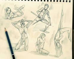 Anatomy Studies by COLOR-REAPER