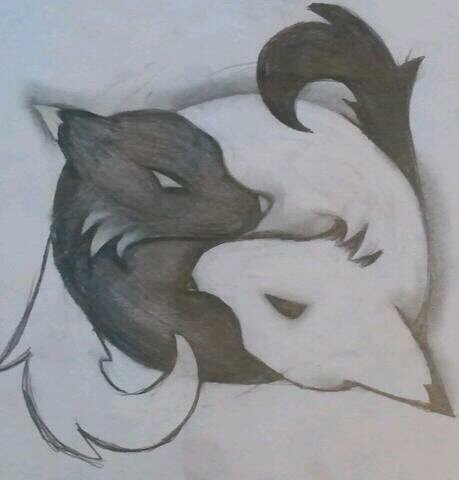 ying yang foxes by GummieBears16 on DeviantArt