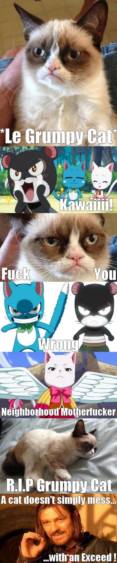 Exceed vs Grumpy Cat by Eroshik