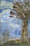 Monet Book Study No. 2