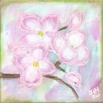 Apple Blossom No. 7