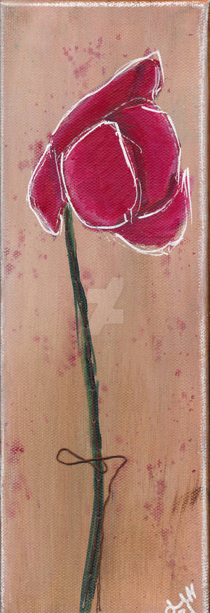 Poppy No. 24