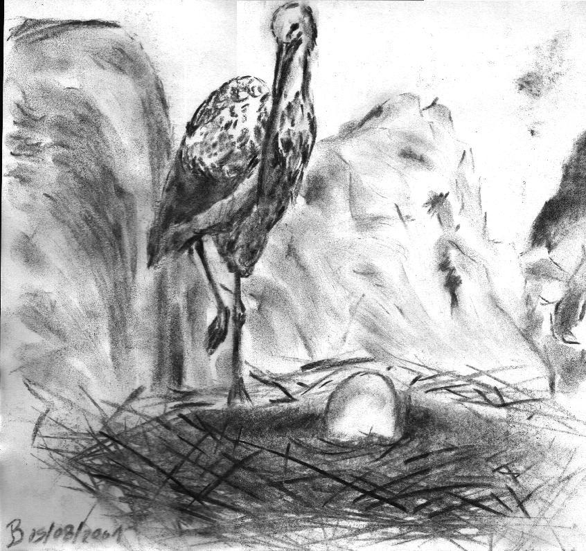 An egg by jbdevart