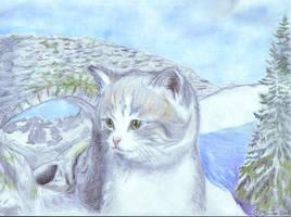 Lost kitten by jbdevart