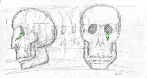 Sketch of a skull by jbdevart