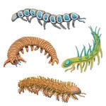 Lobopods