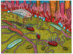 Cambrian Microbial Mat