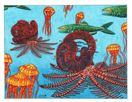 Nipponites Ammonite by NocturnalSea