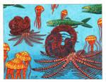 Nipponites Ammonite