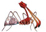 Assassin Spider