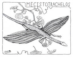 Fossils of the East Coast- Mecistotrachelos by NocturnalSea