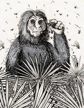 Skunk Ape- Florida