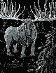 Spectral Moose- Maine