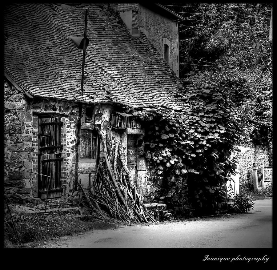 Stare kuće Fairy_house_by_jjeanique-d324rla