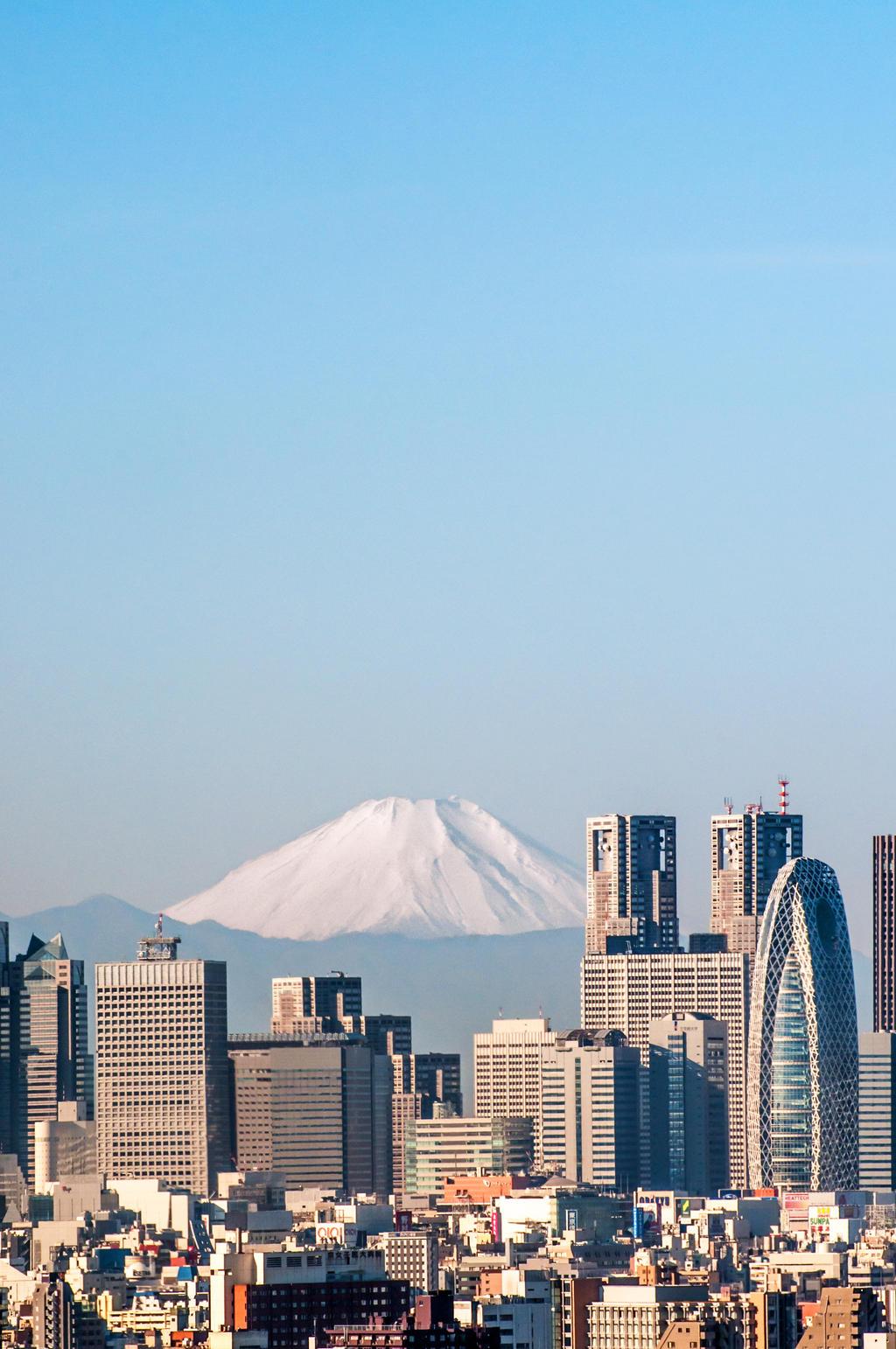 Shinjuku Skyline by andrusm