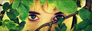 Eye contact 2012