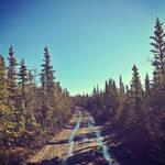Brisk Morning on Stampede Trail
