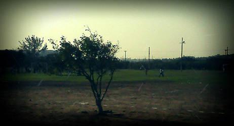 Un campo by tino1989