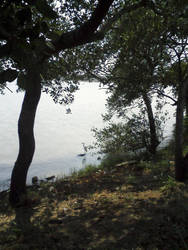 Laguna del carpintero by tino1989