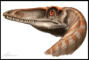Coelophysis bauri portrait by highdarktemplar