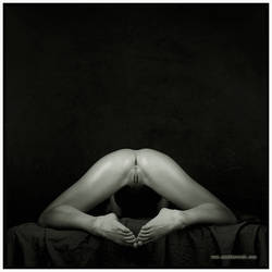 The hidden look 3 by amelkovich