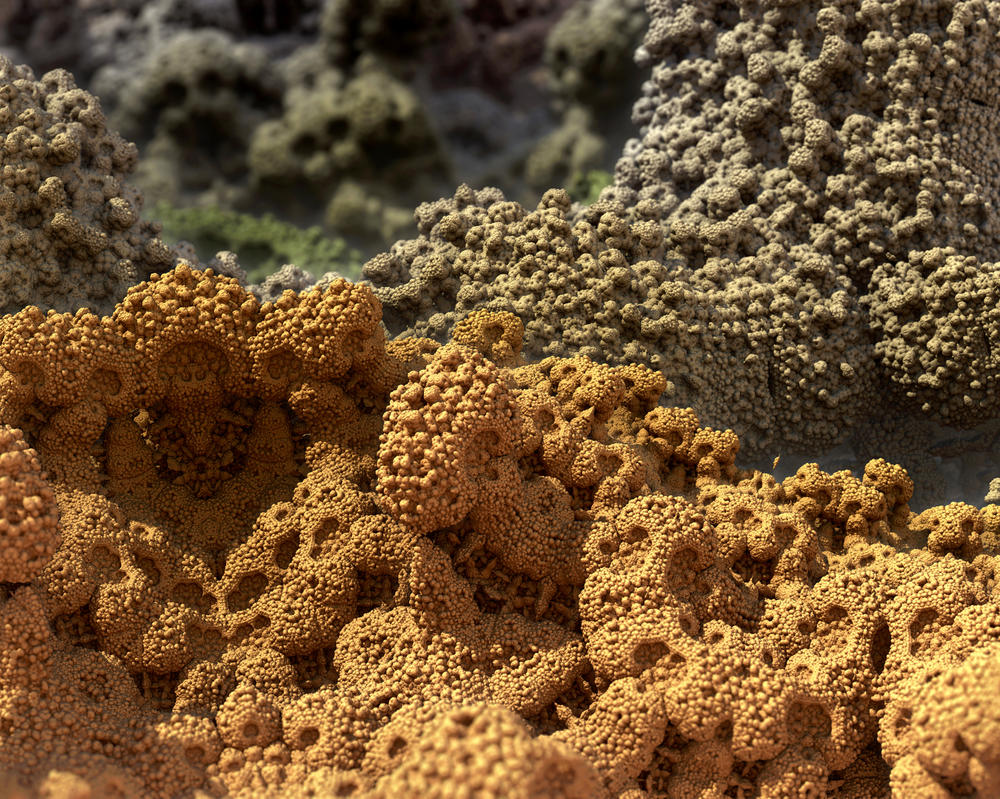 Microfossil by AbstractedEye