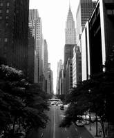 New York City II by DanielJButler