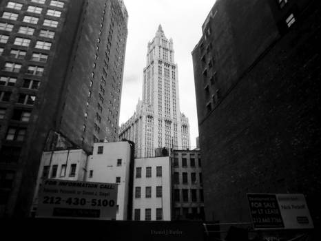 New York City XXIII