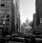 New York City XXIV