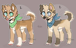 Dog adopts 004 //CLOSED// by TheWildWolfy