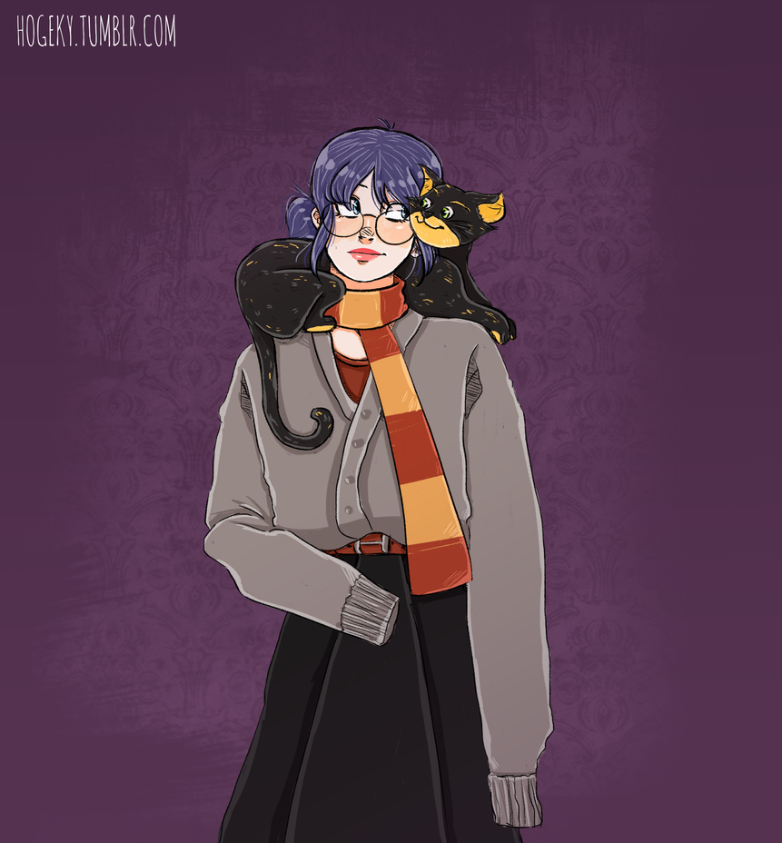 Miraculous Harry Potter AU by Hogekys