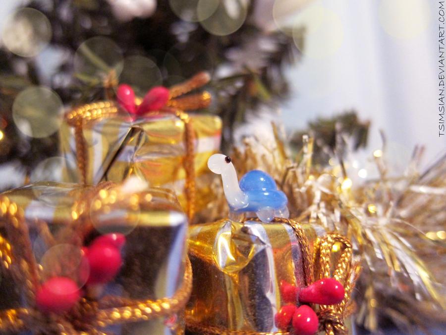 Gift of Kiwi by Tsimsian