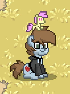 Ponytown! (OFFLINE)