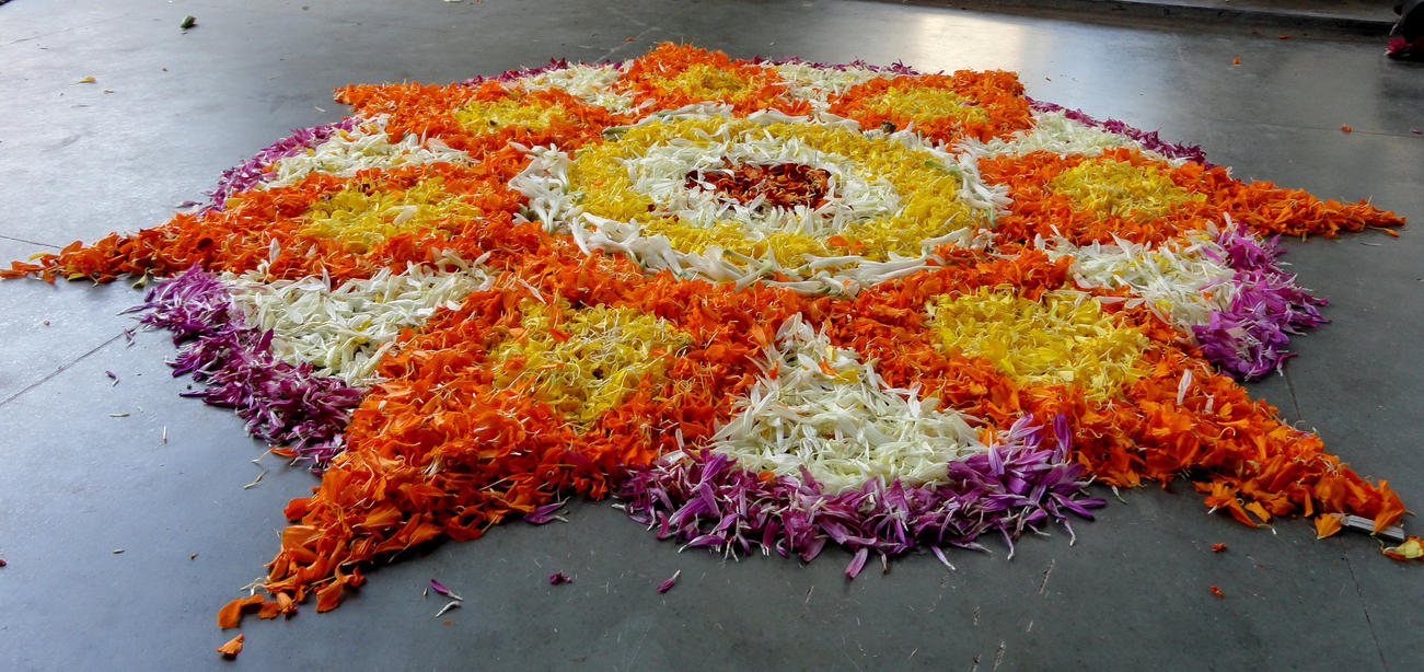 Flowers Rangoli by amit0810