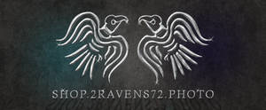 2ravens72 Pewter Style by kwhammes