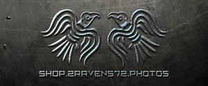2Ravens72 Steel Style