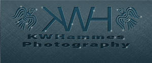 KWH Photo Pressed Style by kwhammes