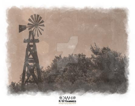 Windmill, Selma, Texas