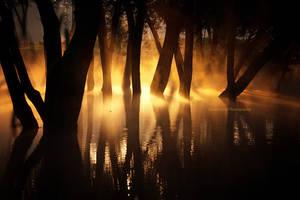Light Maze by DanielZrno