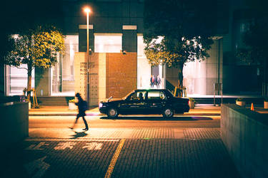 Walking Home by DanielZrno