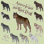 ImBa American Indian Dog