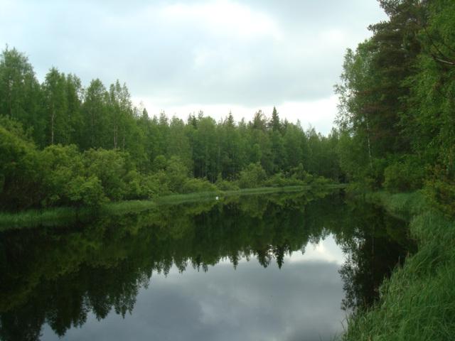 Sanginjoki river by Miimi90