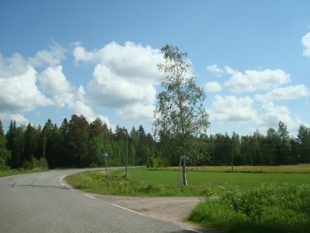Landscape by Miimi90