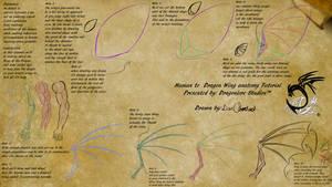 Human to Dragon Wing Anatomy Tutorial by DragonLoreStudios